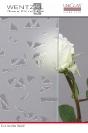 Diamante Weiß